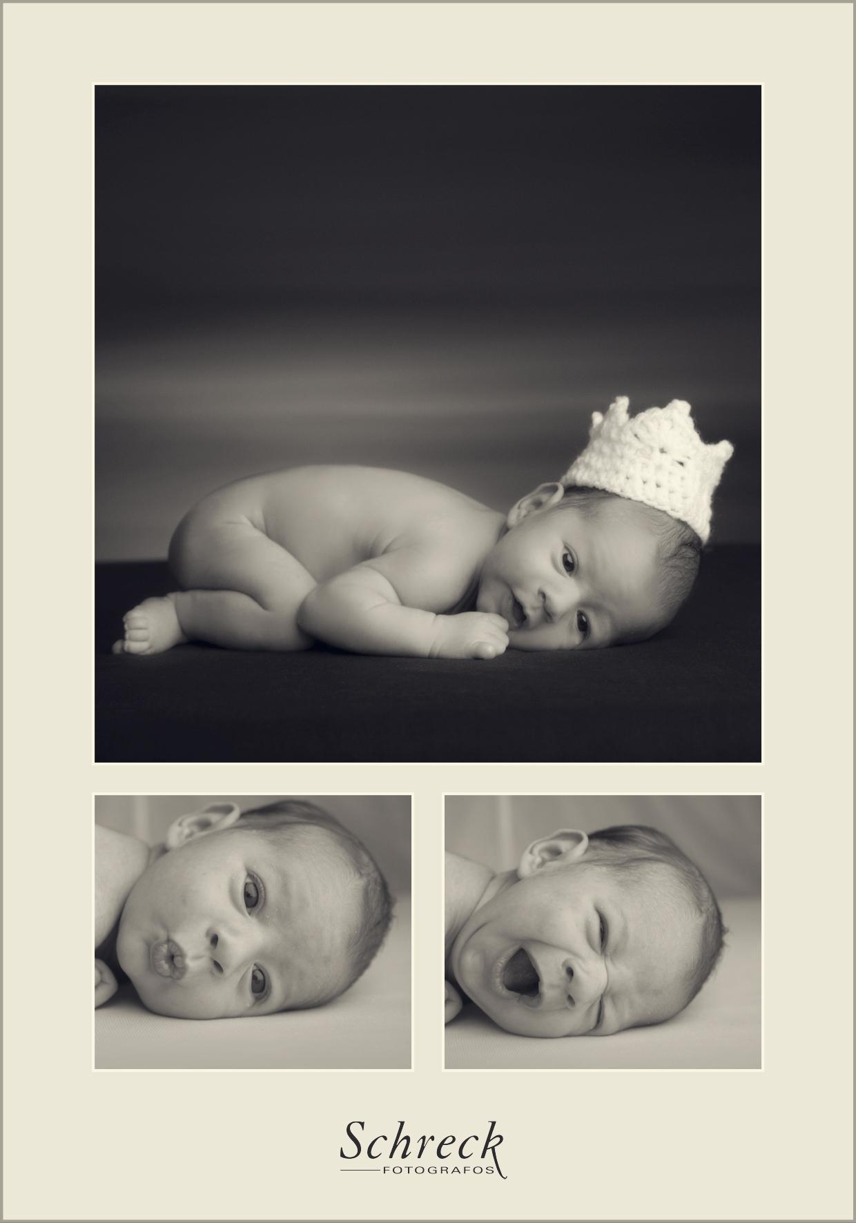 New born Schreck fotógrafos 3