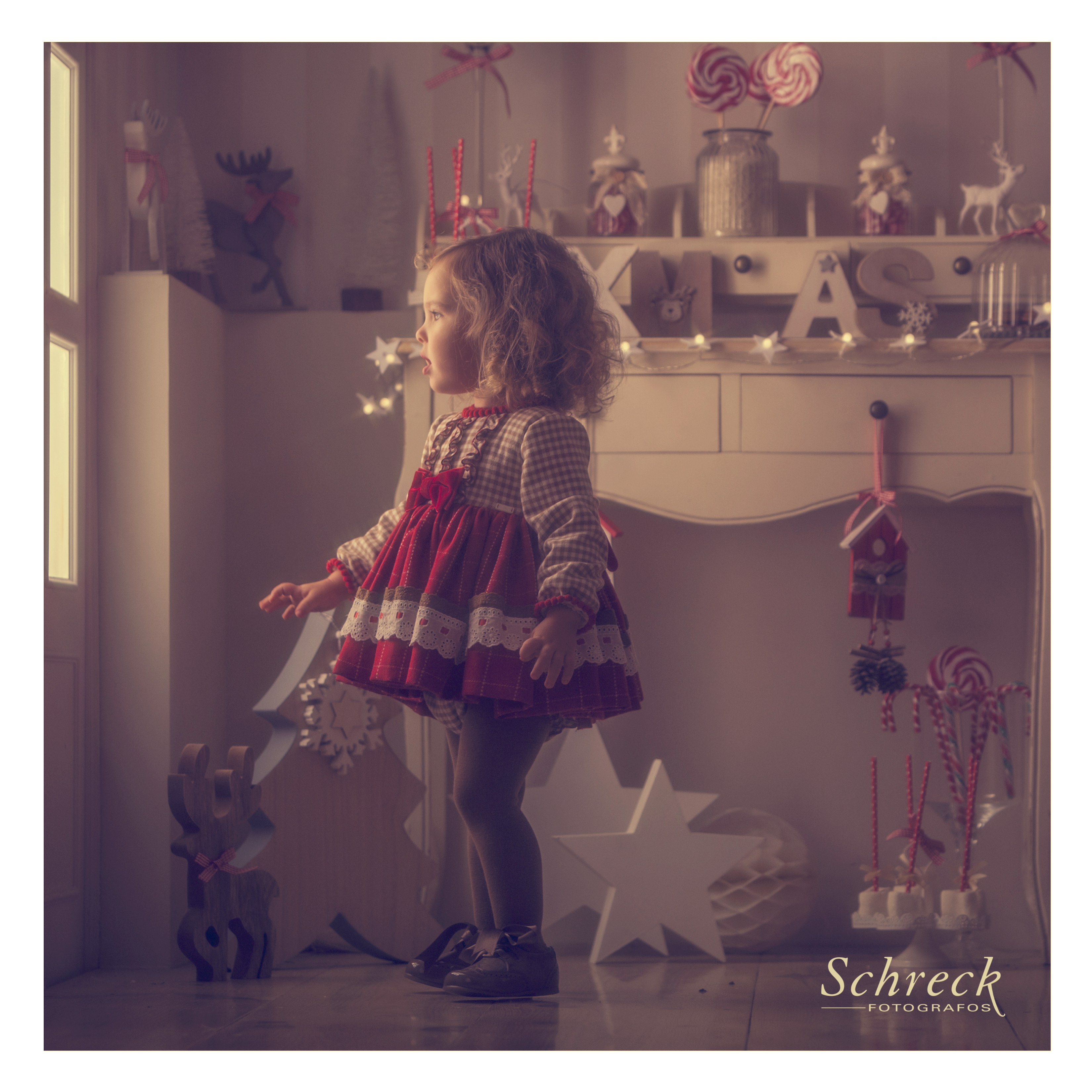 Schreck Christmas_10