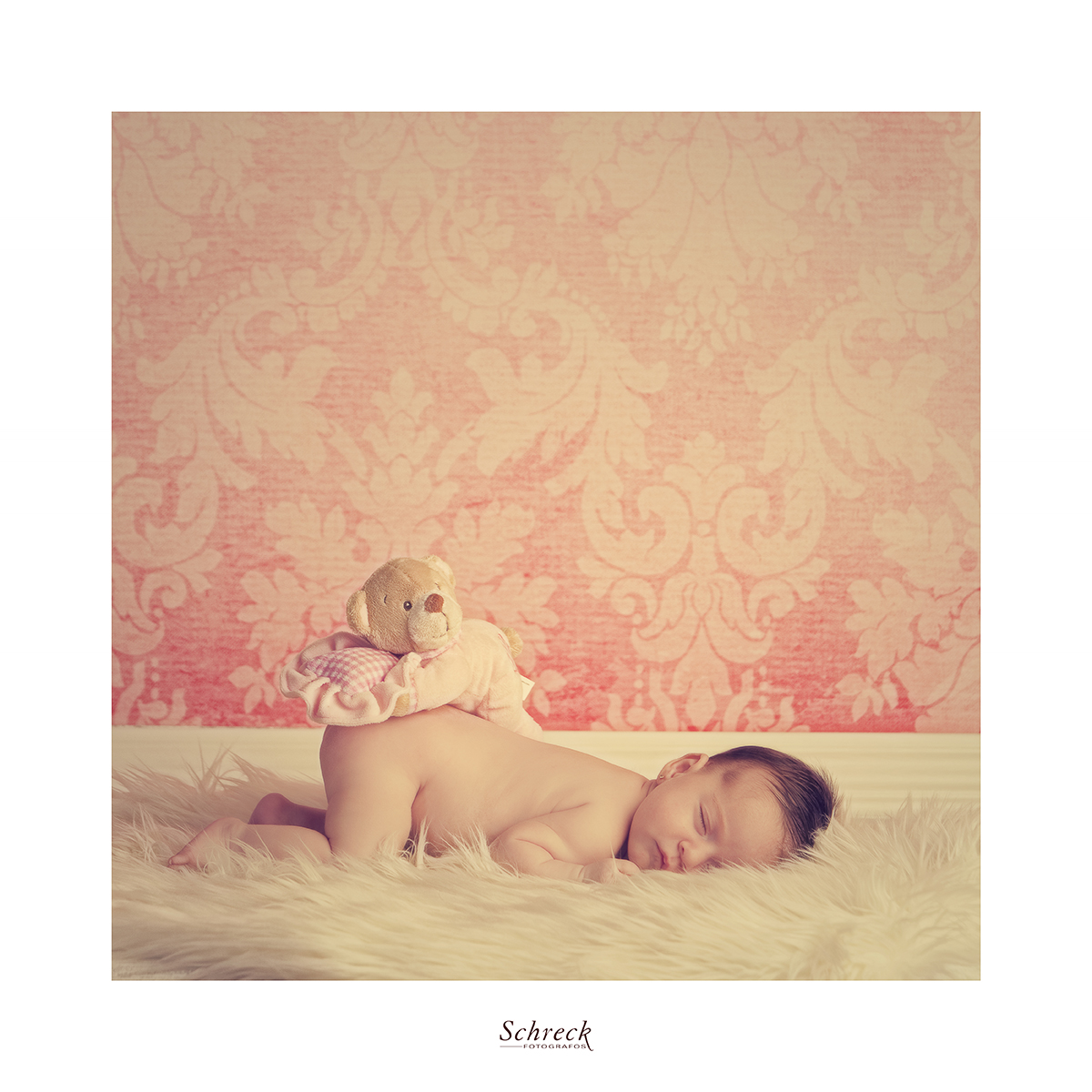 New born Schreck fotógrafos