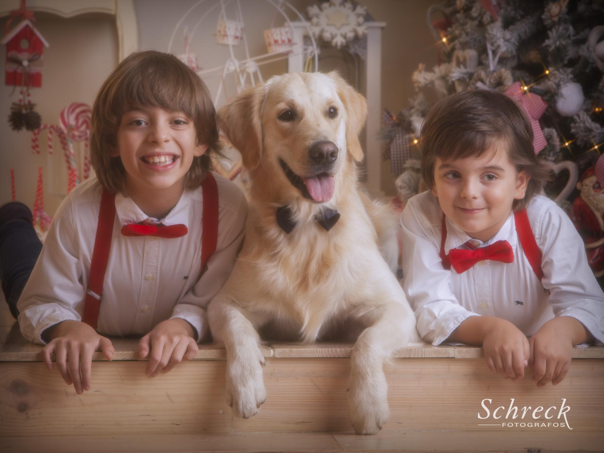 Schreck-Christmas_25